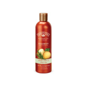 Natures Gate 443242 Shampoo Asian Pear And Red Tea 350ml
