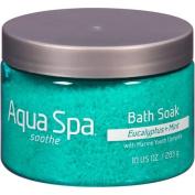 Aqua Spa Eucalyptus + Mint Soothe Bath Soak, 300ml