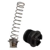 Pentair 77707-0010 Thermal Regulator Replacement Kit Pool And Spa Heater