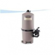 Hayward DE2420 Micro Clear Filter - Permaglass