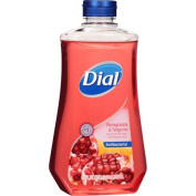 Dial Pomegranate & Tangerine Scent Liquid Hand Soap with Moisturiser Refill, 950ml