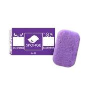 Gaia Republic Inc. 916LA Dr. Sponge Lavender Body Cleansing Konjac Sponge
