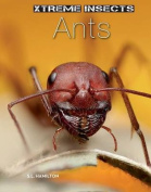 Ants (Xtreme Insects)