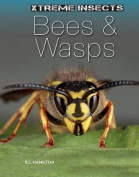 Bees & Wasps (Xtreme Insects)