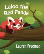 Laloo the Red Panda