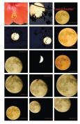 Journal Junction - Stalking the Moon