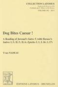 Dog Bites Caesar!
