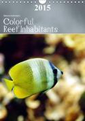 Colorful Reef Inhabitants