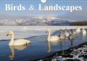 Birds & Landscapes / UK-Version