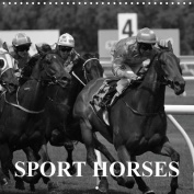Passion Sport Horses