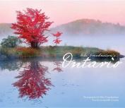 Mike Grandmaison's Ontario