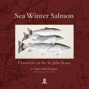 Sea Winter Salmon