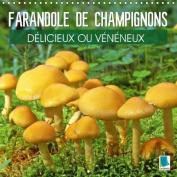 Farandole De Champignons - Delicieux Ou Veneneux [FRE]