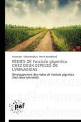 Redies de Fasciola Gigantica Chez Deux Especes de Lymnaeidae [FRE]