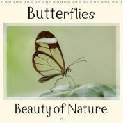 Butterflies Beauty of Nature