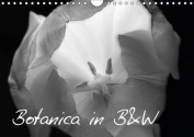 Botanica in B&W