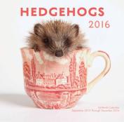 Hedgehogs 2016 Mini