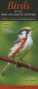 Birds of the Mid-Atlantic States