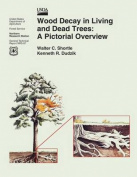 Wood Decay in Living and Dead Trees