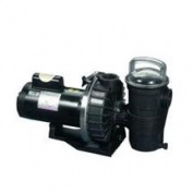 Pentair 343233 1 Hp Challenger Pump