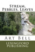 Stream, Pebbles, Leaves