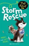 Storm Rescue (Pup Patrol)