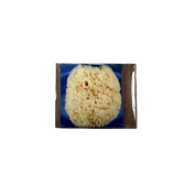 Riffi Premium natural sponge approx 14-15cm in gift box - R3354