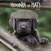 Hounds in Hats 2016