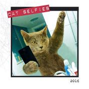 Cat Selfies 2016