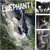Elephant 2016