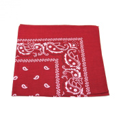 Paisley Bandana Bandanna Headwear Hair Bands Scarf Neck Wrist Wrap Band Head tie