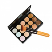 15 Colours Makeup Concealer Foundation Cream Cosmetic Palette Set Tools With Brush