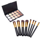 15 Colours Makeup Palette Concealer Foundation Kit with 8pcs Eyeshadow Brushes set