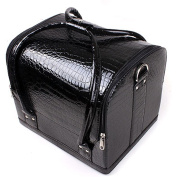 NEW Black Beauty Box Cosmetic Make Up Vanity Saloon Case
