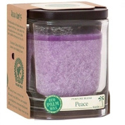 Aloha Bay Candles Peace Violet Jar Candle