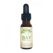 Bay Essential Oil. Therapeutic Grade 100% Pure, 15ml Amber Glass Dropper Bottle