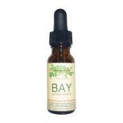 Bay Essential Oil. Therapeutic Grade 100% Pure, 15ml Amber Glass Dropper Bottle