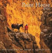 2016 Paint Horse Wall Calendar