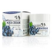 Aqua Cream (Moisture Jelly Type) - Blueberry Fresh Cooling, 50g/1.7oz