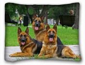 Decorative Standard Pillow Case Animals Dogs Shepherd language grass 50cm *70cm One Side