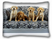 Decorative Standard Pillow Case Animals Dogs sofa FOUR 50cm *70cm One Side