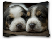 Decorative Standard Pillow Case Animals Dogs Puppies view 50cm *70cm One Side