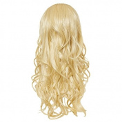 Hairaisers Live it Loud Curly Volumising Hair Piece or Ponytail 60cm - 24SB