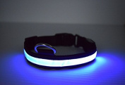 3 Mode LED Light up Dog/cat/pet Collars