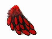 Red Laced Hen Feathers for Crafting 12pc/bag