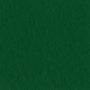 Bazzill Prismatic Cardstock 22cm x 28cm -Classic Green 25 per pack