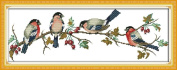 Benway Stamped Cross Stitch Bullfinches On Branch 14 Count (Stamped Aida) 56x22CM