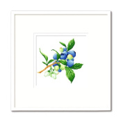 DOMEI Stamped Cross Stitch Kit, Blueberry, 31cm x 31cm