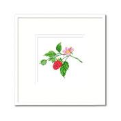 DOMEI Stamped Cross Stitch Kit, Wild Berry, 31cm x 31cm