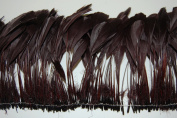 1 Dozen Striped BURNT COQUE Feather Fringe - BROWN